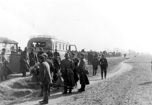 Polenevakuierung Polen verlassen in Autobussen das Dorf Blonie.