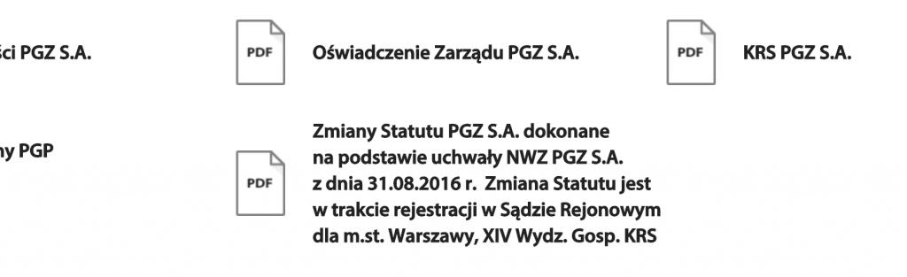 Zrzut ekranu ze strony Polskiej Grupy Zbrojeniowej
