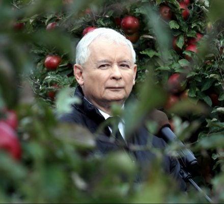 Kaczyński robi z rolników idiotów. CETA wejdzie w życie bez zgody Sejmu