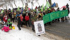 Marsz w obronie Puszczy Bialowieskiej .
