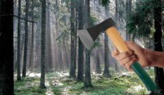 forestgump