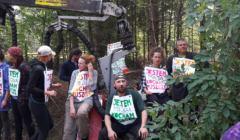 6 blokada harvestera w Puszczy 29 czerwca 2017