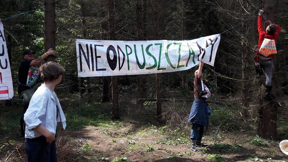 Fot. Fundacja Dzika Polska