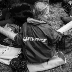 fot. Karol Grygoruk / Greenpeace Polska