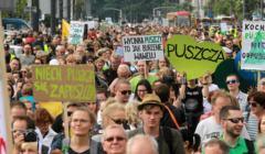 Marsz dla Puszczy