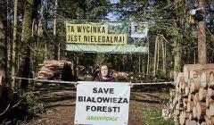 Protest-Greenpeace-i-Obozu-dla-Puszczy-w-Puszczy-B