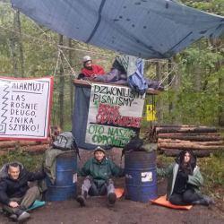 Fot. Obóz dla Puszczy