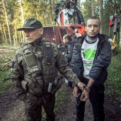 Fot. Rafał Wojczal / Greenpeace Polska
