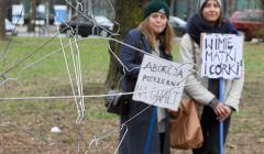 Demonstracja przeciw zakazowi aborcji pod Sejmem