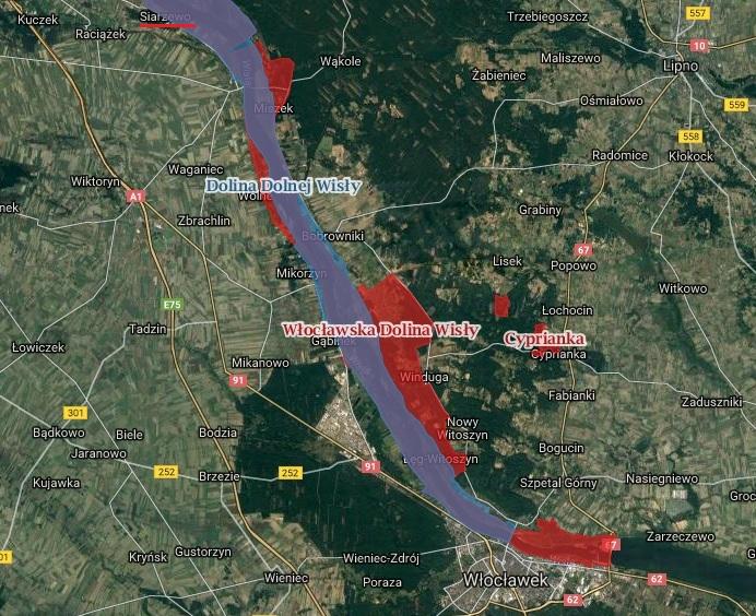 Zdjęcie satelitarne pokazuje lokację najbardziej zagrożonego budową stopnia w Siarzewie obszaru NATURA 2000 - Włocławskiej Doliny Wisły. A także część innego obszaru, któremu grożą zniszczenia - Doliny Dolnej Wisły. Nazwę Siarzewa, gdzie ma powstać kolejny stopień wodny, zaznaczono czerwonym podkreśleniem. Źródło: http://geoserwis.gdos.gov.pl