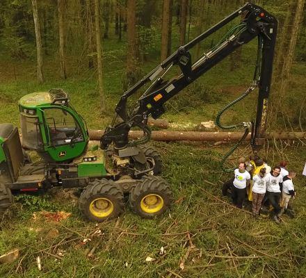 Puszcza Białowieska: rok temu TSUE uznał nielegalność wycinki. Tymczasem Lasy Państwowe przygotowują się do kolejnej