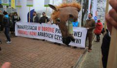 Torwar--Protest-w-sprawie-odwolania-prezesow-stadniny koni w Janowie