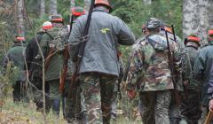 Koronawirus: lasy mają być wolne od ludzi, ale myśliwi mogą wchodzić