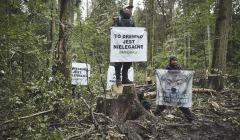Blokada w Puszczy Białowieskiejej