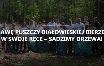 Fot. strona internetowa Ekologicznego Forum Młodzieży