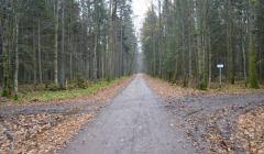Droga Narewkowska przed remontem (1)