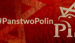 ipn_polin_pis_grafika