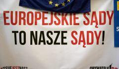 Pikieta--Europo-Bron-Sadu-Najwyzszego--podczas-kon