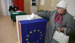 wybory do PE, eurowybory