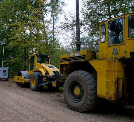 Lasy Państwowe dalej chcą asfaltować Puszczę. Nowy konflikt z Unią? [UJAWNIAMY DOKUMENT]