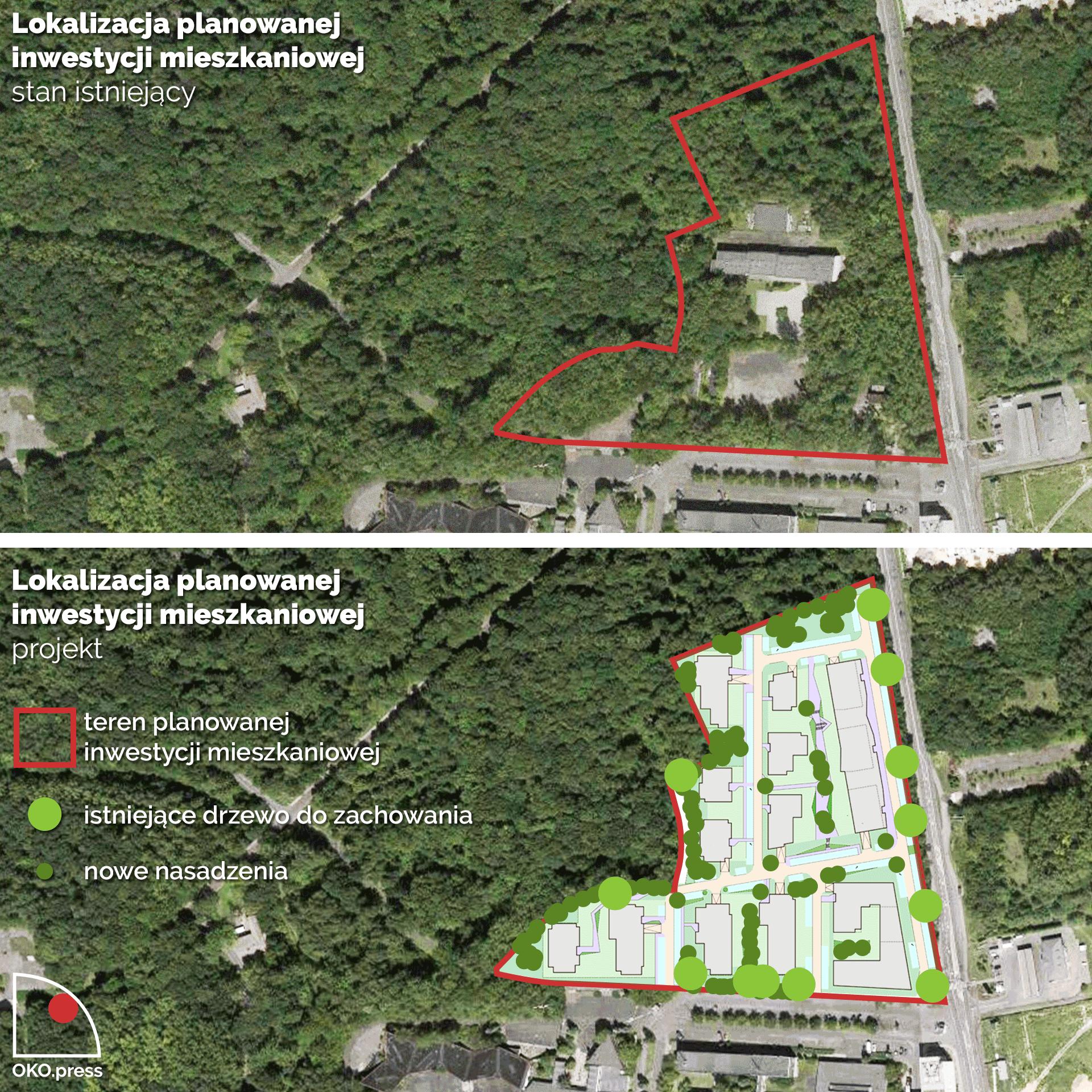 Zdjęcie lotnicze przedstawiające ilość drzew na działce obecnie i stan planowany przez dewelopera