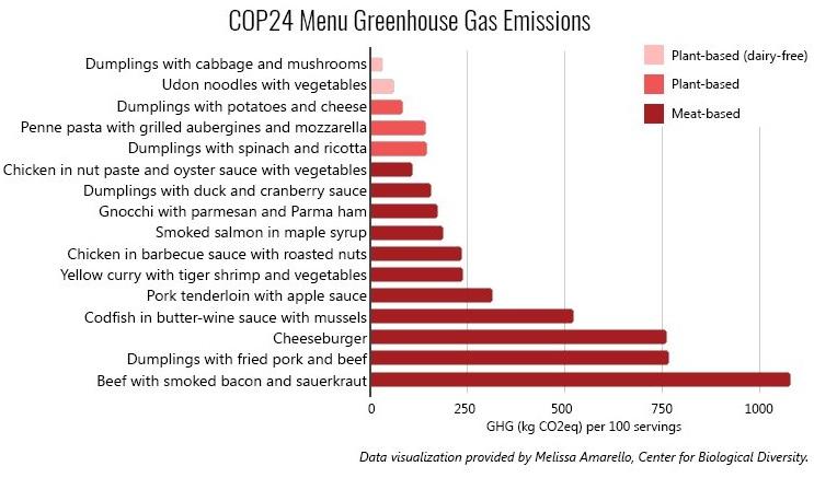 analiza menu COP24 mięso