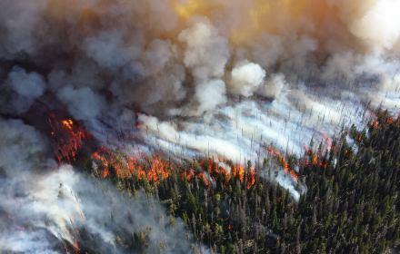 """Mówienie o """"katastrofie klimatycznej"""" to nie alarmizm, lecz wyraz odpowiedzialności"""