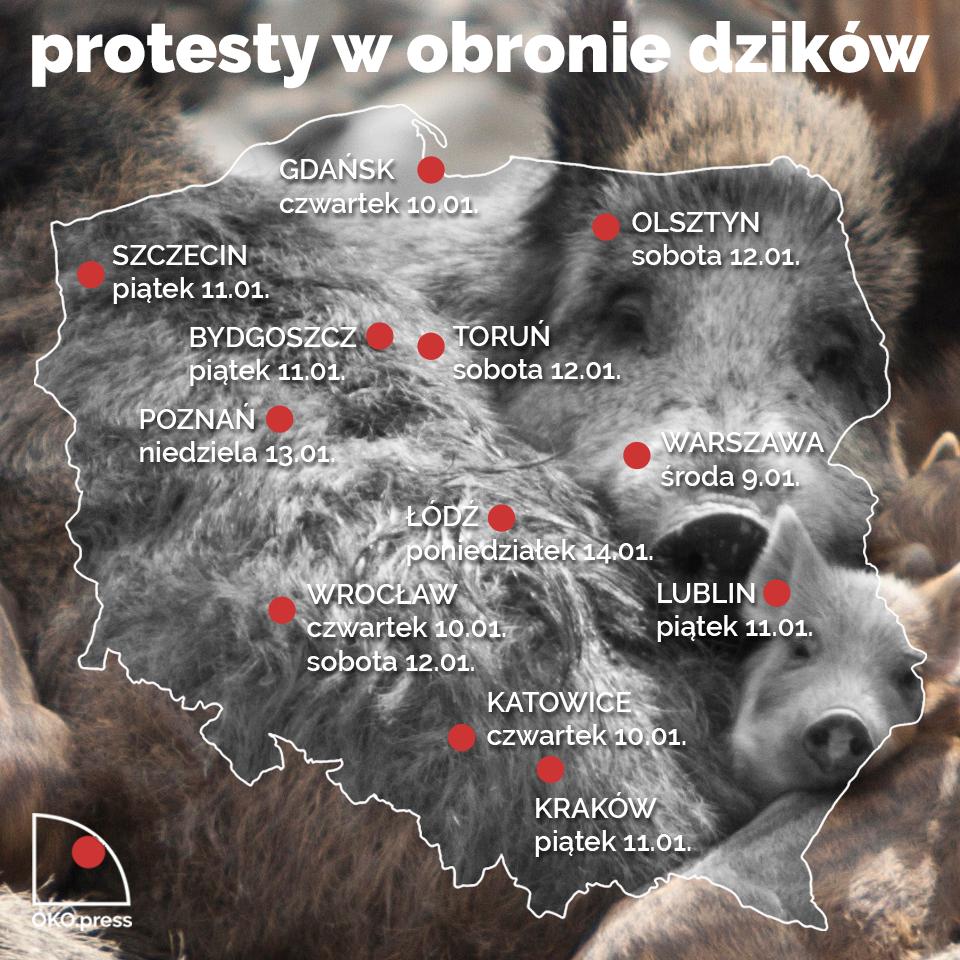 Mapka protestów w obronie dzików