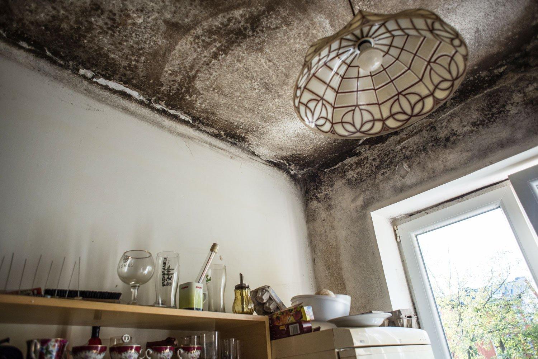 Kuchnia mieszkania przy ul. Serockiej. Fot.: Jakub Szafrański