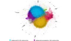chmura społeczności w Twitterze, niebeiski PiS, żółty PO, czerwony Wiosna, nardowcy fioletowy