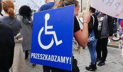 Demonstracja niepełnosprawność3