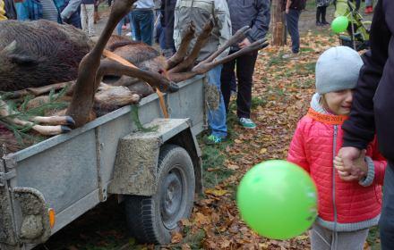 Myśliwi znów będą zabierać dzieci na polowania. Ministerstwo środowiska obeszło ustawowy zakaz