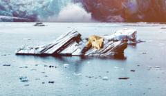 Marek Pęk wątpi w globalne ocieplenie. Tymczasem to fakt