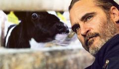 Joaquin Phoenix w poruszającej mowie bronił zwierząt