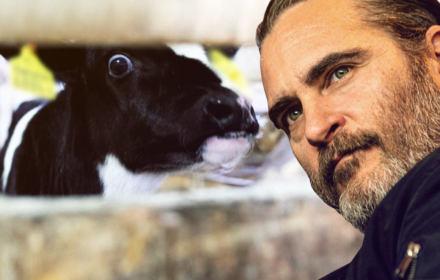 """""""Sztucznie zapładniamy krowę i kradniemy jej dziecko"""". Poruszająca mowa Joaquina Phoenixa na gali Oscarów"""