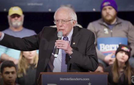 Bernie Sanders, New Hampshire, źródło: wideo NYT