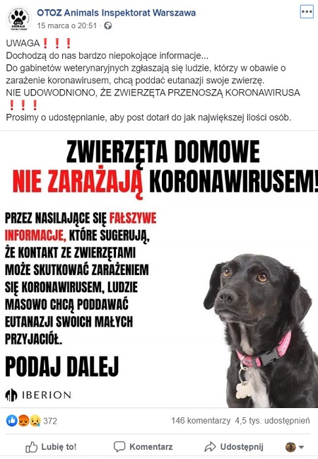 koronawirus usypianie zwierząt to fake