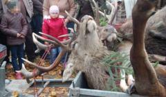 Dzieci biorące udział w polowaniu