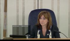 Gabriela Morawska-Stanecka, debata o ustawie o głosowaniu korespondencyjnym, Wybory, Senat, 5 maja 2020