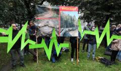protest przeciwko wycince Puszczy Karpackiej w Krakowie