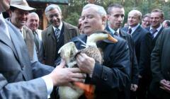 Kaczyński prawa zwierząt
