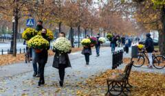 Ludzie z chryzantemami w Alejach Ujazdowskich w Warszawie