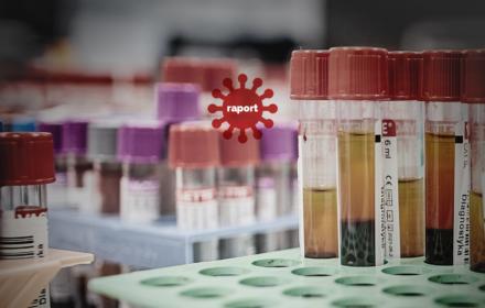 Koronawirus – raport o pandemii, 24.11.2020
