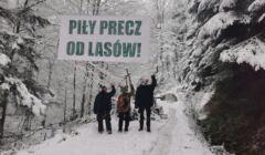kolektyw Wilczyce protestuje w Puszczy Karpackiej