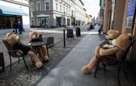 Pluszowe misie w kawiarni Cafe Kino w Bydgoszczy