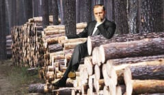 Donald Tusk o wycinkach drzew