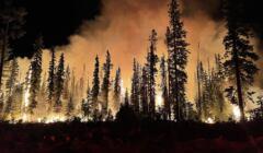 pożar lasu Umatilla w Oregonie