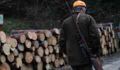 Zablokowane polowanie Wigilijne w gminie Krempna