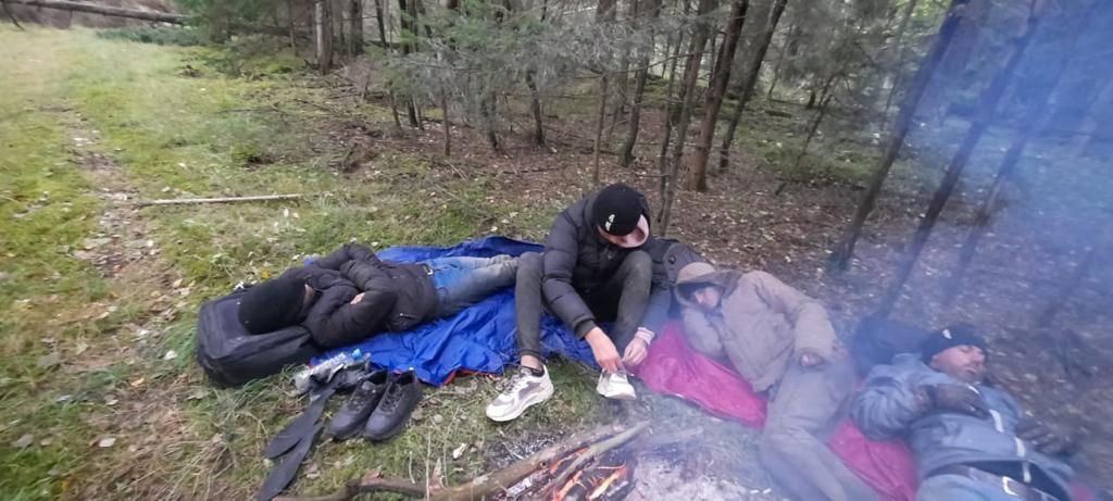 jazydzi w leśnym obozie